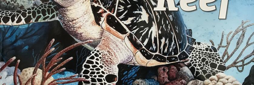 <em>Edit Conservation Project/Cause</em> On the Reef -  | Susan Gosevitz