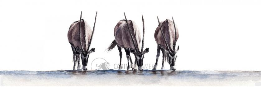 <em>Edit Conservation Project/Cause</em> Kayamoja ArtConnects - &quot;Essentials&quot;, a 40 x 15cm watercolour painting | Carina Kramer
