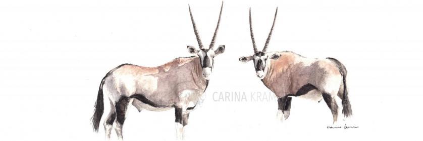 <em>Edit Conservation Project/Cause</em> Wildlife Artist of the Year 2019 -  | Carina Kramer