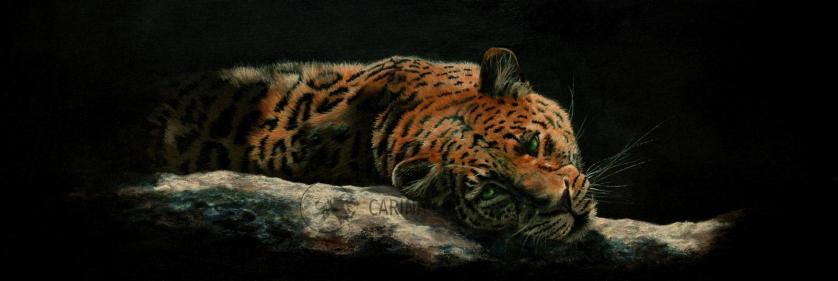 <em>Edit Conservation Project/Cause</em> Wildlife Artist of the Year 2017 - &quot;Two Worlds&quot;, 120 x 40cm | Carina Kramer