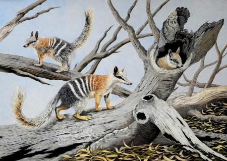 Excursion of the Numbats | Wallhanging by Dr. Elke Gröning | Artists for Conservation 2020