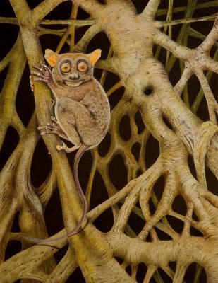 Strangler Fig Leprechaun | Wallhanging by Dr. Elke Gröning | Artists for Conservation 2021