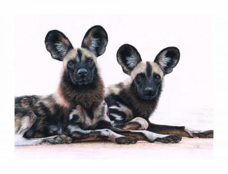 We're All Ears | Wallhanging by Charlotte Williams | Artists for Conservation 2021