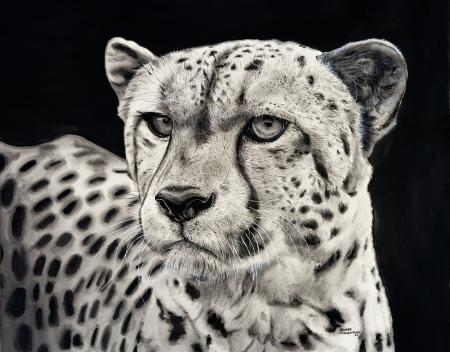 Portrait of a Cheetah  | Wallhanging by James Fiorentino | Artists for Conservation 2021