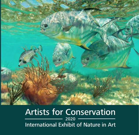 Artists for Conservation 2020