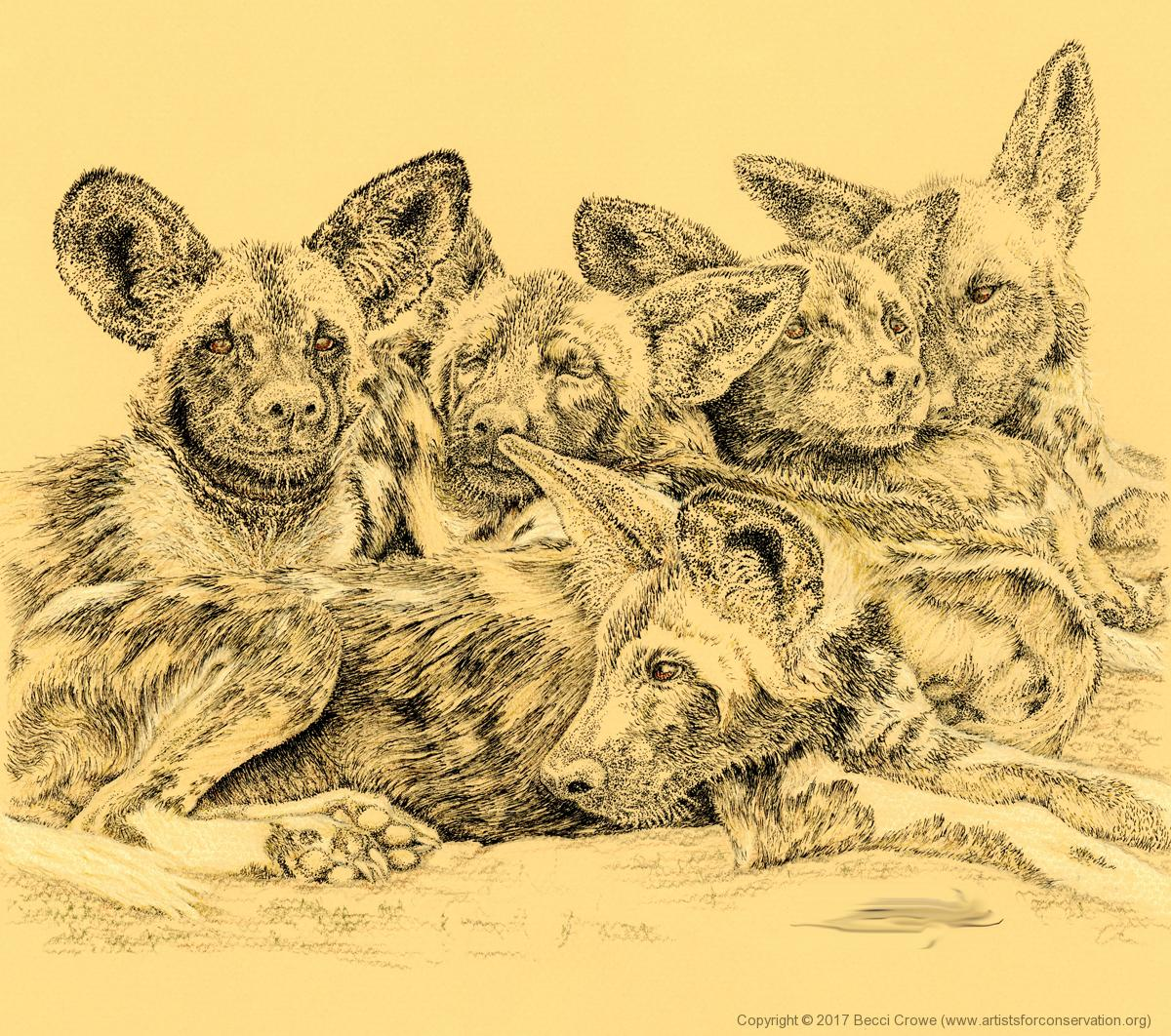 Edit Artwork   Wallhanging by Becci Crowe   Artists for Conservation