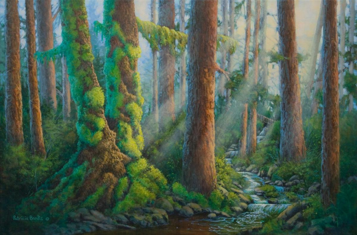 Edit Artwork   Wallhanging by Patricia Banks   Artists for Conservation
