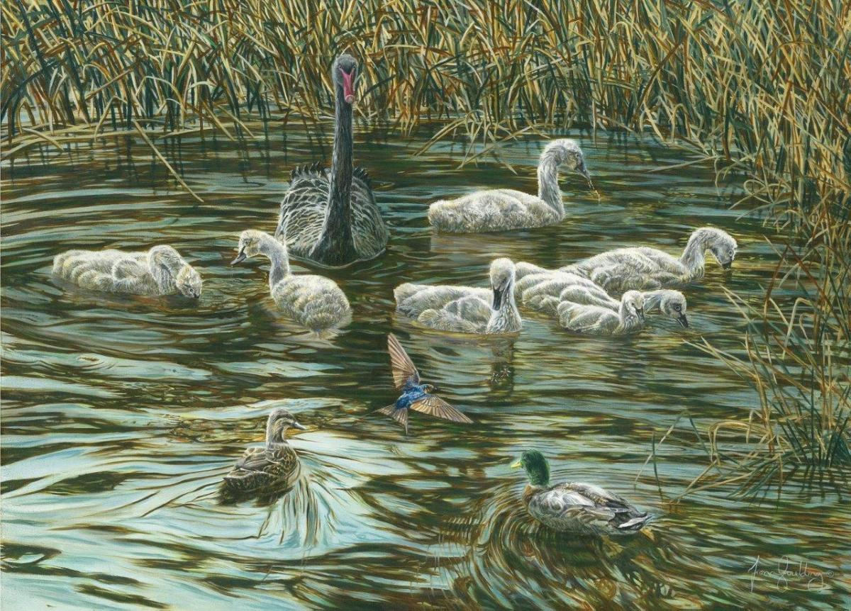 Edit Artwork   Wallhanging by Fiona Goulding   Artists for Conservation