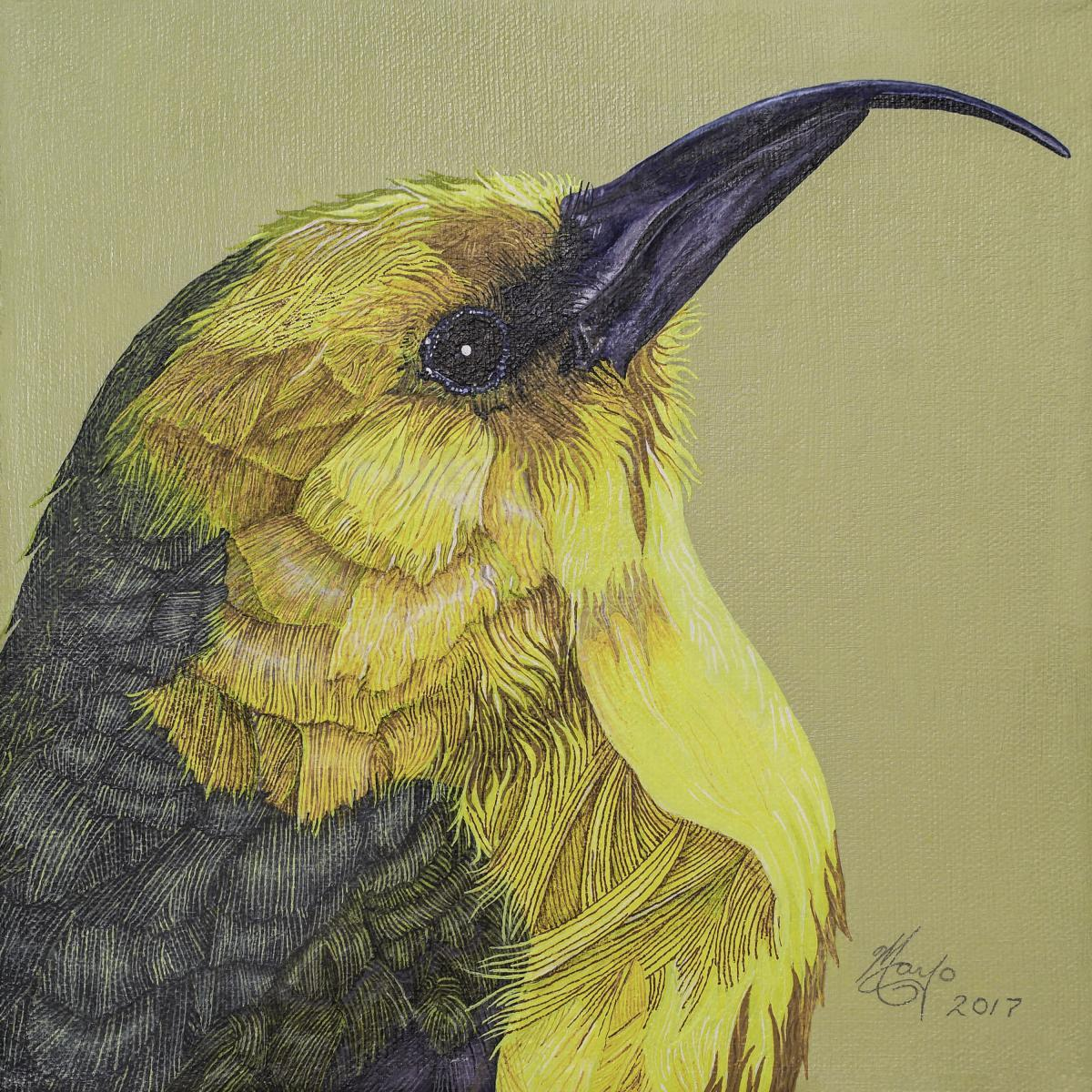 Edit Artwork | Wallhanging by Tony Mayo | Artists for Conservation
