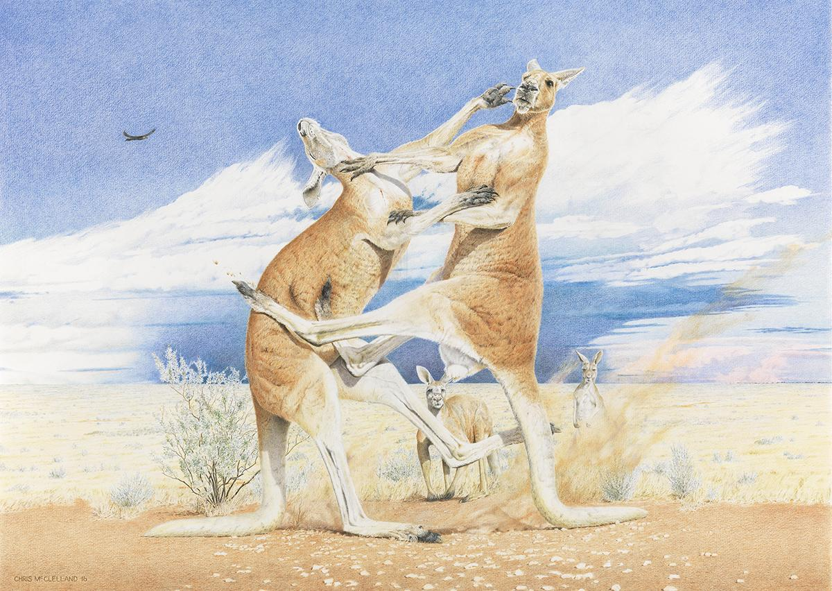   Wallhanging by Chris McClelland   Artists for Conservation