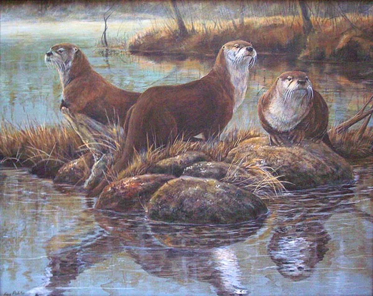 | Wallhanging by Kay Polito | Artists for Conservation
