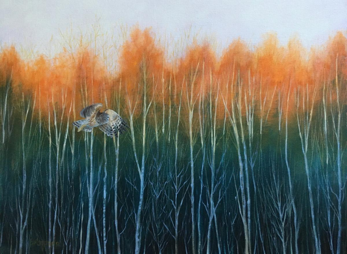 Add Artwork   Wallhanging by Betsy Popp   Artists for Conservation