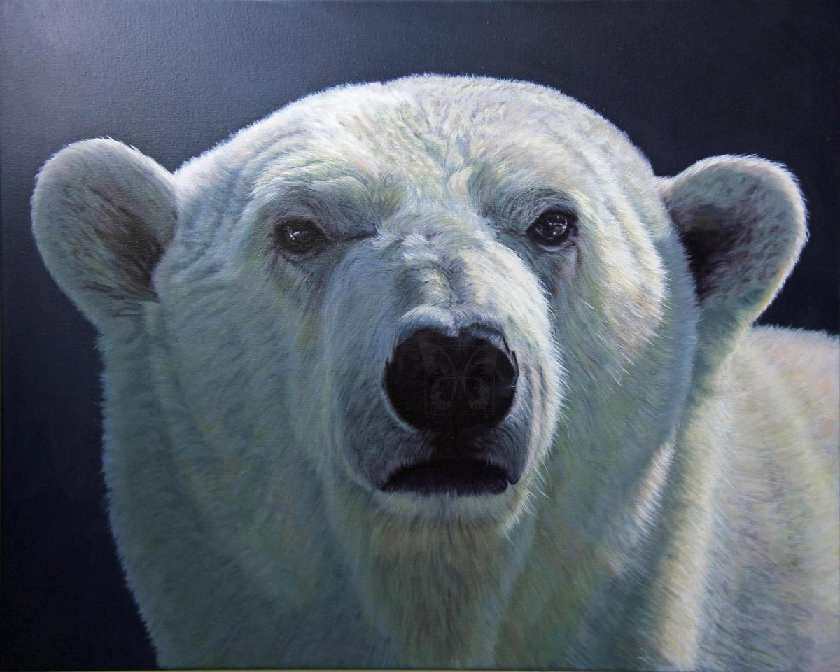 Edit Artwork   Wallhanging by Nelda Warkentin   Artists for Conservation
