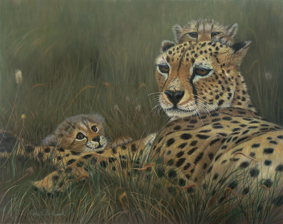 Edit Artwork   Wallhanging by Marie Kirkwood   Artists for Conservation