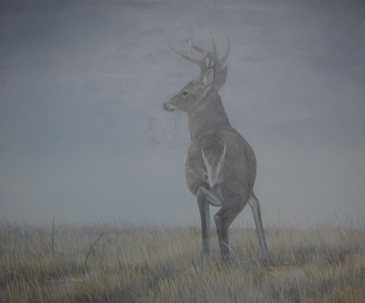 Add Artwork | Wallhanging by Colin Starkevich | Artists for Conservation