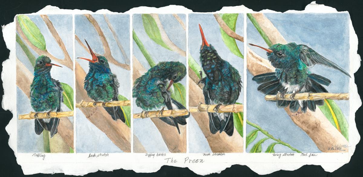 Add Artwork   Wallhanging by Lynn Waltke   Artists for Conservation
