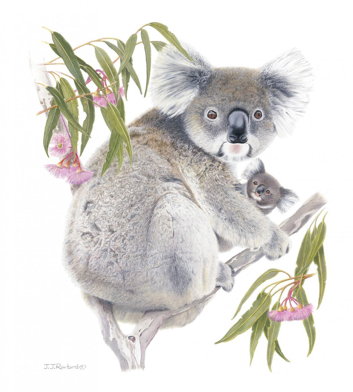   Wallhanging by John Rainbird   Artists for Conservation