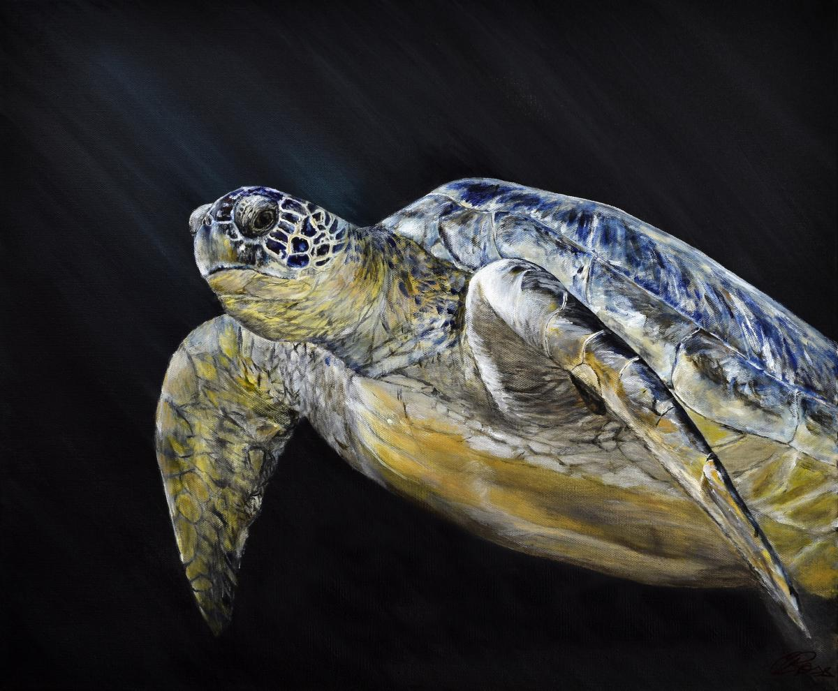Edit Artwork   Wallhanging by Carleen Ross   Artists for Conservation