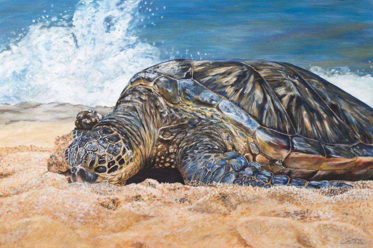 Edit Artwork | Wallhanging by Carleen Ross | Artists for Conservation