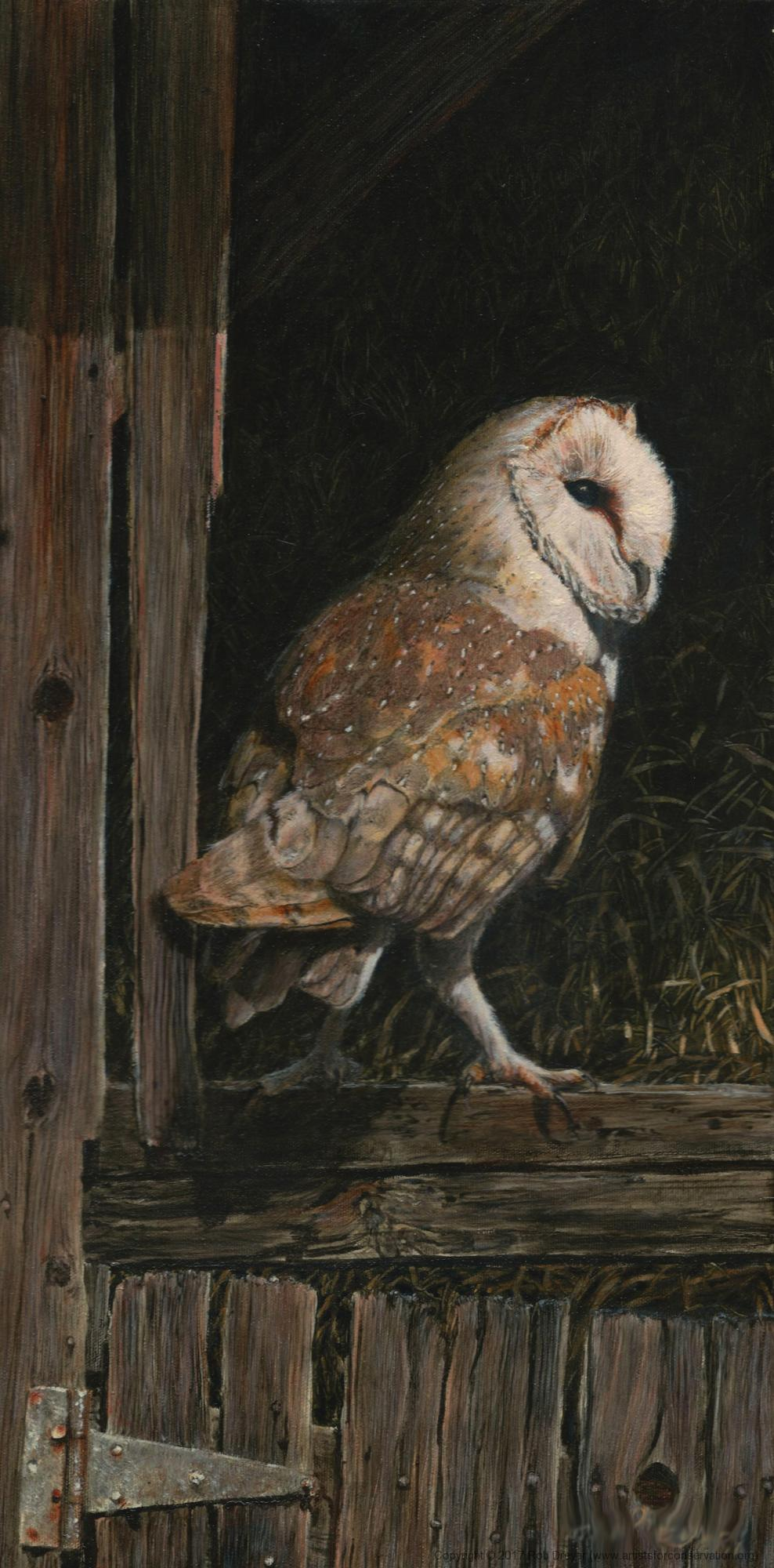 Edit Artwork   Wallhanging by Rob Dreyer   Artists for Conservation