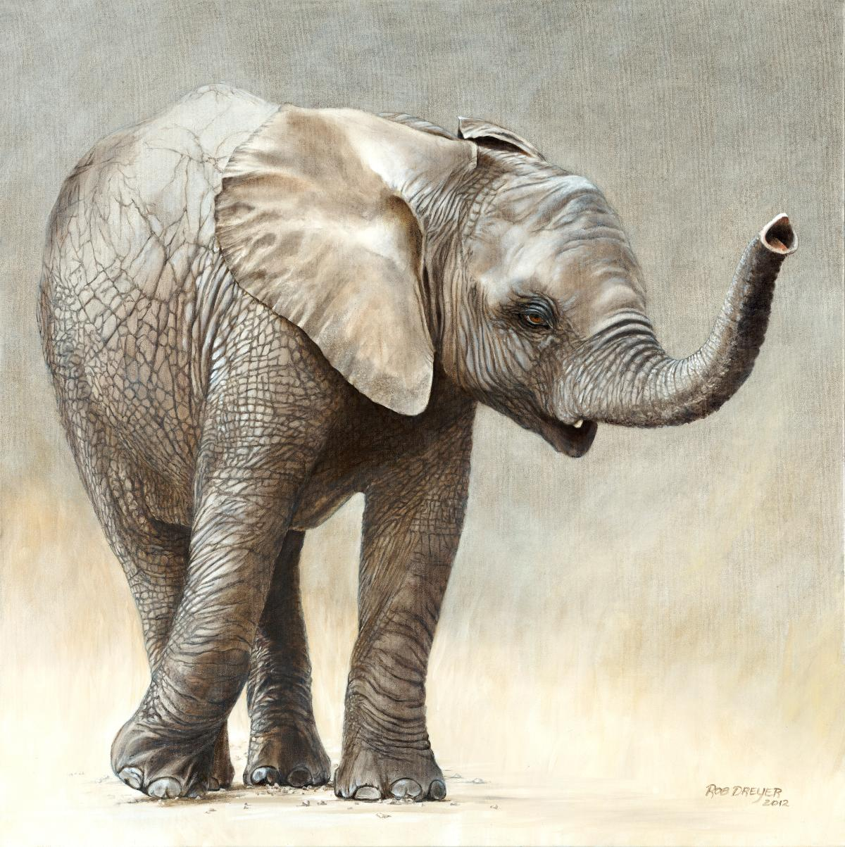   Wallhanging by Rob Dreyer   Artists for Conservation