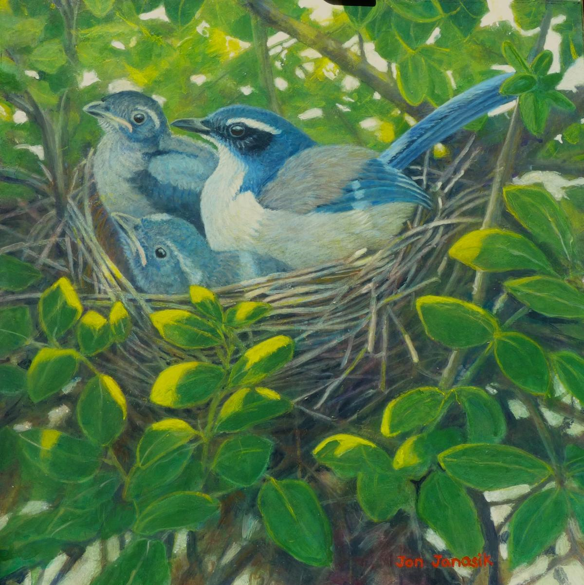 Add Artwork   Wallhanging by Jon Janosik   Artists for Conservation