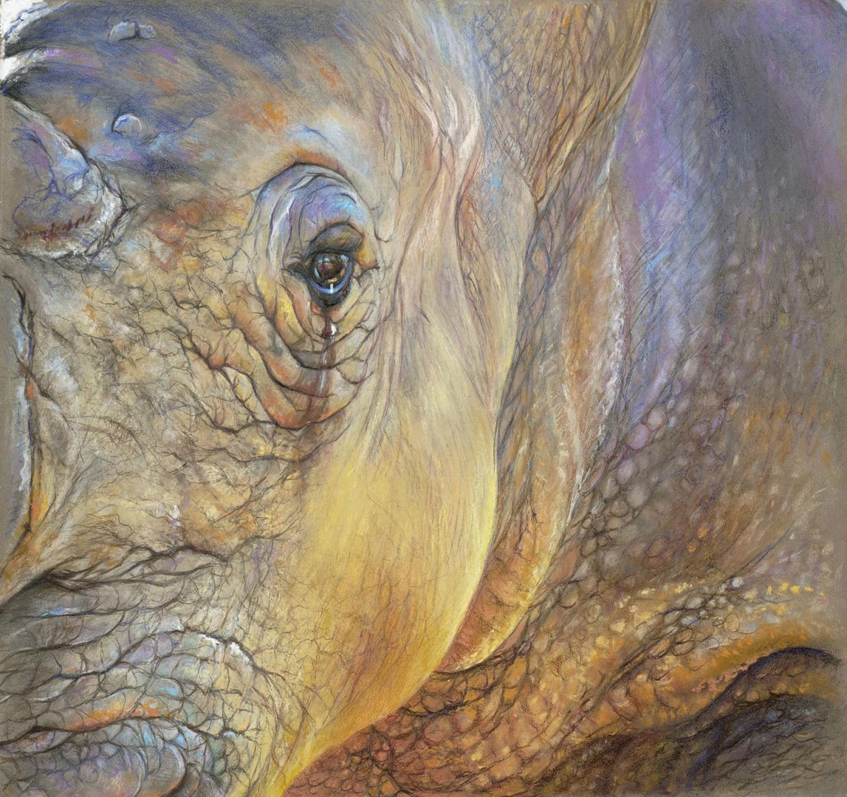 Edit Artwork   Wallhanging by Geraldine Simmons   Artists for Conservation