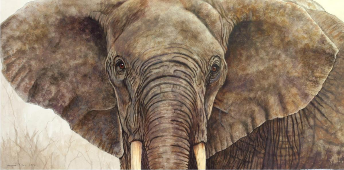 Add Artwork | Wallhanging by Jacquie Vaux | Artists for Conservation