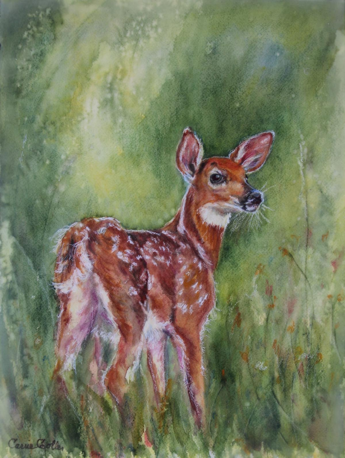 Add Artwork   Wallhanging by Carrie Goller   Artists for Conservation