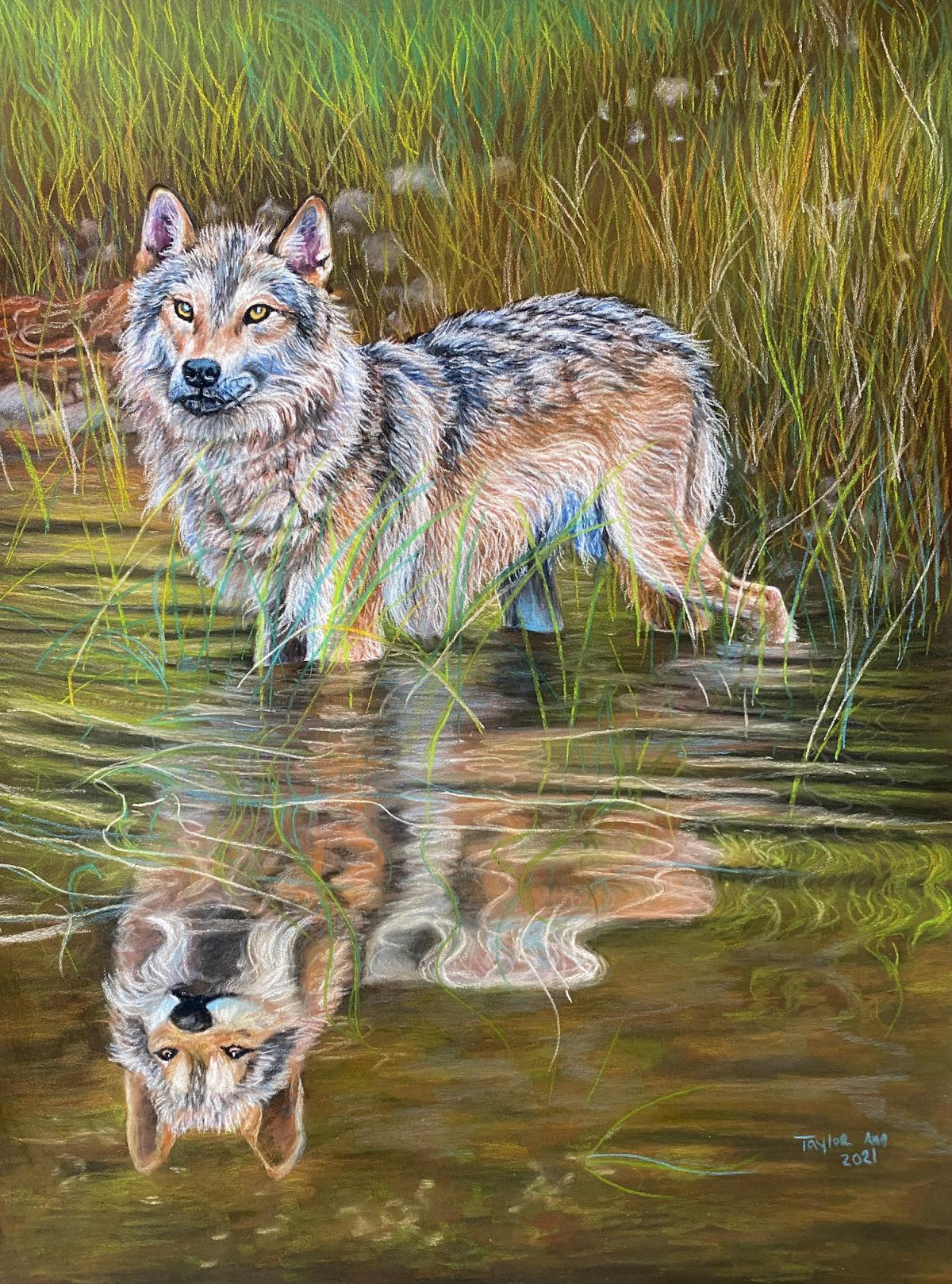 Add Artwork   Wallhanging by Taylor Ann   Artists for Conservation