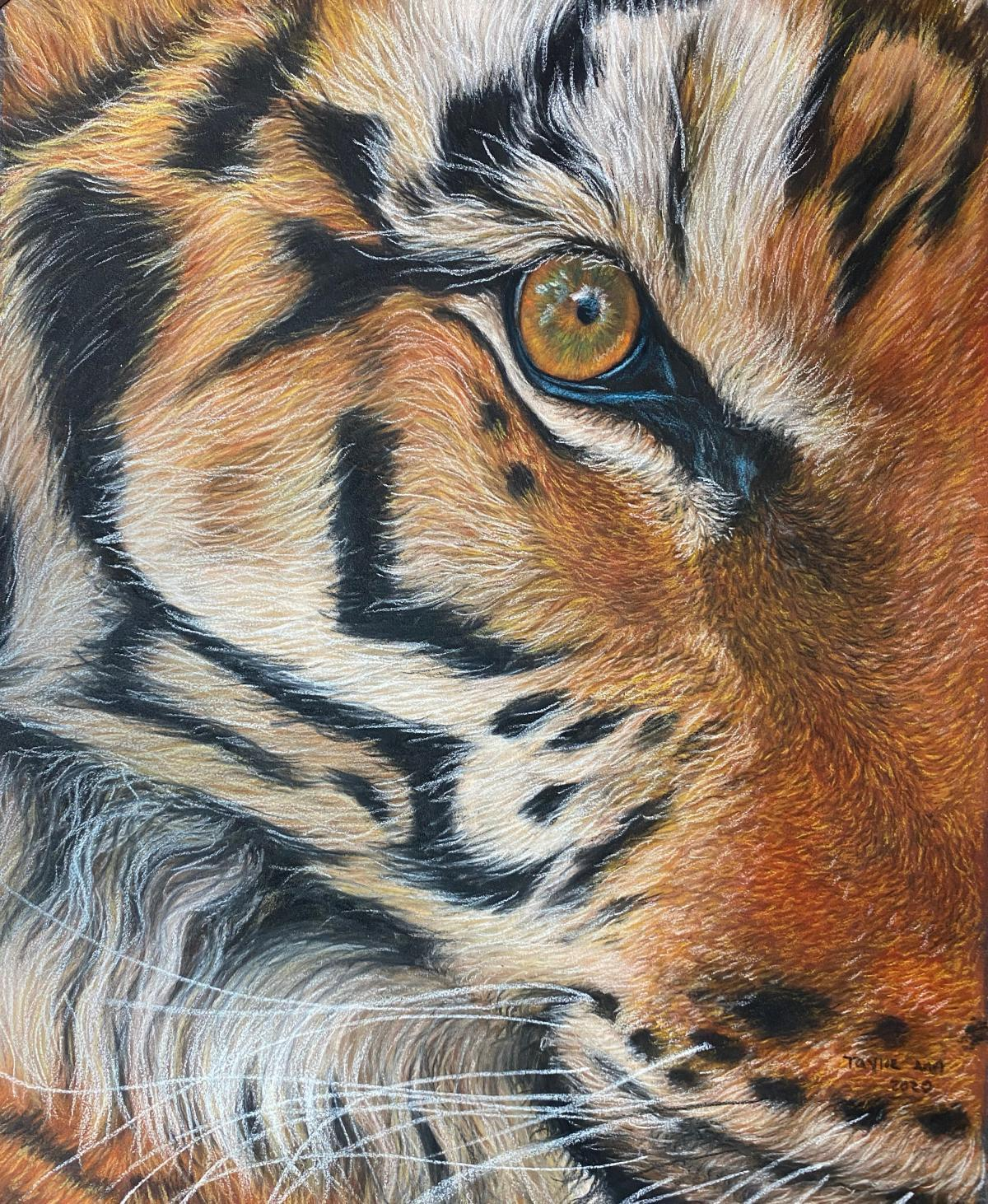   Wallhanging by Taylor Ann   Artists for Conservation