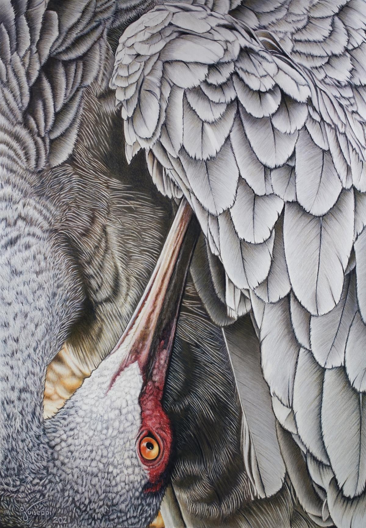 Add Artwork | Wallhanging by John Guiseppi | Artists for Conservation