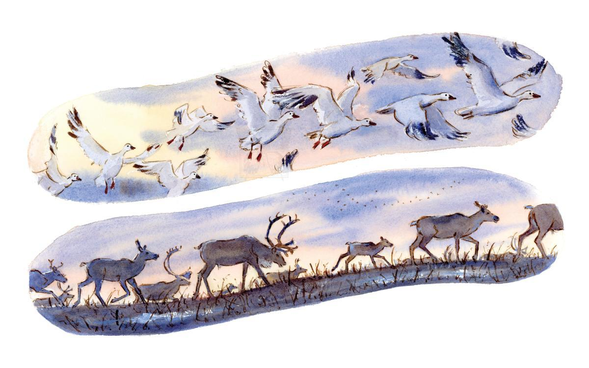 Add Artwork | Wallhanging by Genevieve Irwin | Artists for Conservation