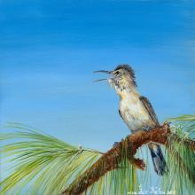 Saipan Reed-warbler by AFC