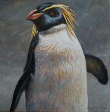 Erect-crested Penguin, Big-crested Penguin by AFC
