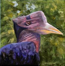 Helmeted Hornbill by AFC