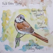 Hoary-throated Spinetail by AFC