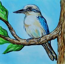 Tuamotu Kingfisher, Mangareva Kingfisher by AFC