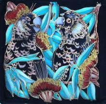 Long-billed Black-cockatoo, Long-billed Black-Cockatoo, Long-billed Black Cockatoo, White-tailed Black-Cockatoo by AFC