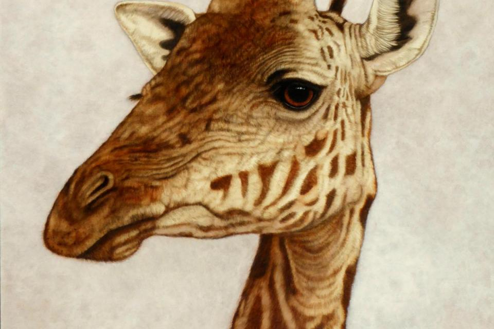 | Wallhanging by Jacquie Vaux | Artists for Conservation