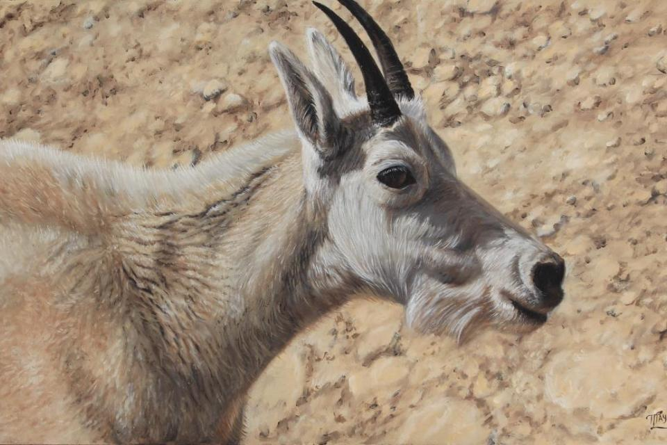Edit Artwork   Wallhanging by Tammy Taylor   Artists for Conservation