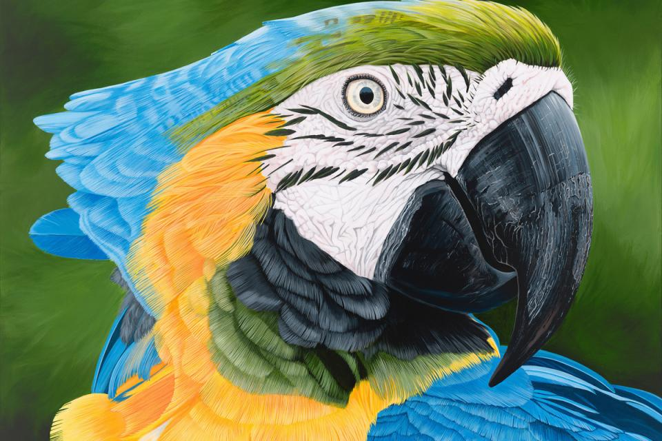 Edit Artwork | Wallhanging by Lynn Erikson | Artists for Conservation