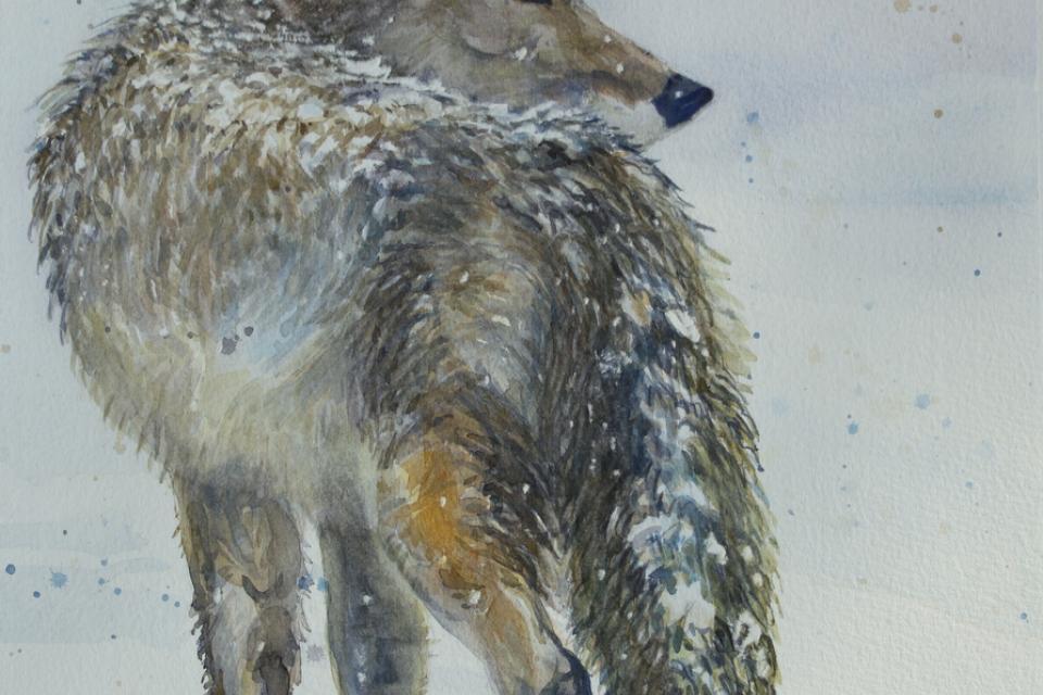 Edit Artwork | Wallhanging by Karyn deKramer | Artists for Conservation
