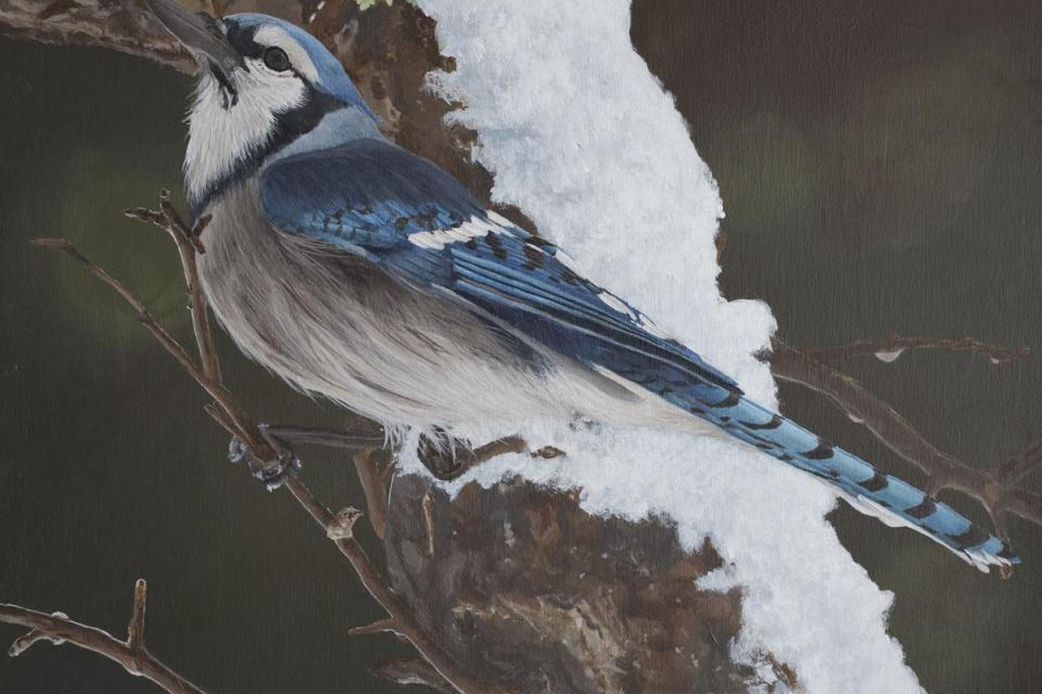 Add Artwork | Wallhanging by Shawna Lampi-Legaree | Artists for Conservation