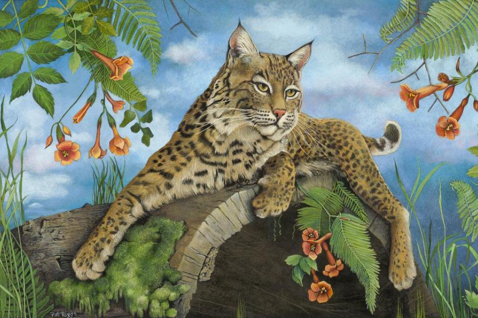 Add Artwork | Wallhanging by Pat Riggs | Artists for Conservation
