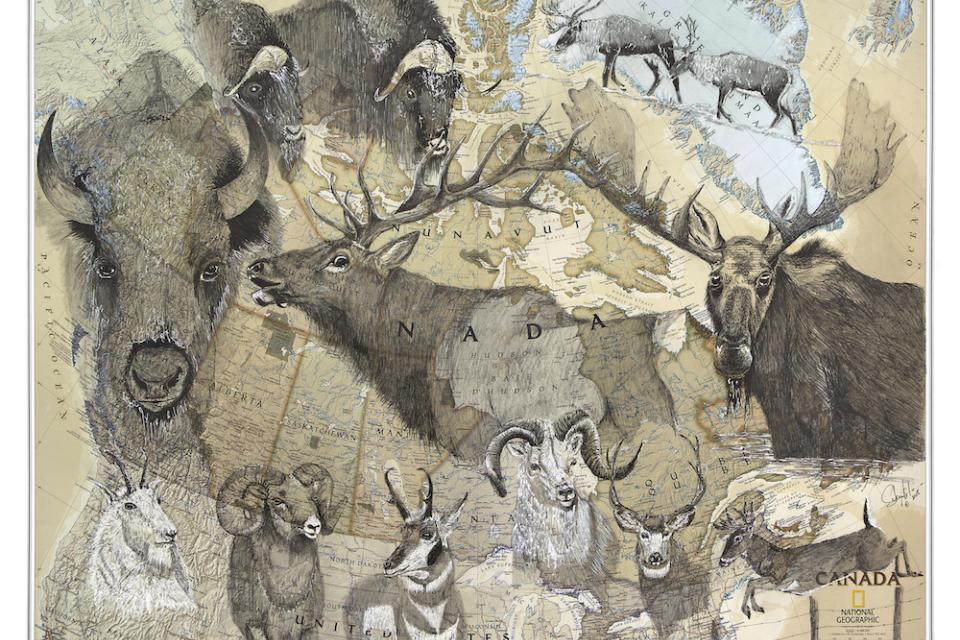 Edit Artwork   Wallhanging by Stuart Arnett   Artists for Conservation