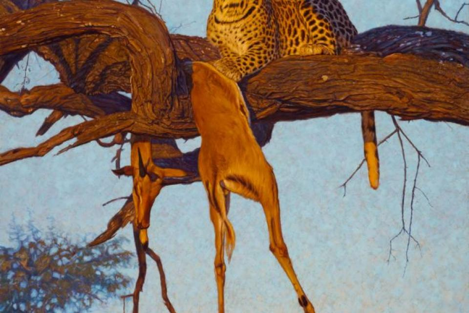 Add Artwork | Wallhanging by John Banovich | Artists for Conservation