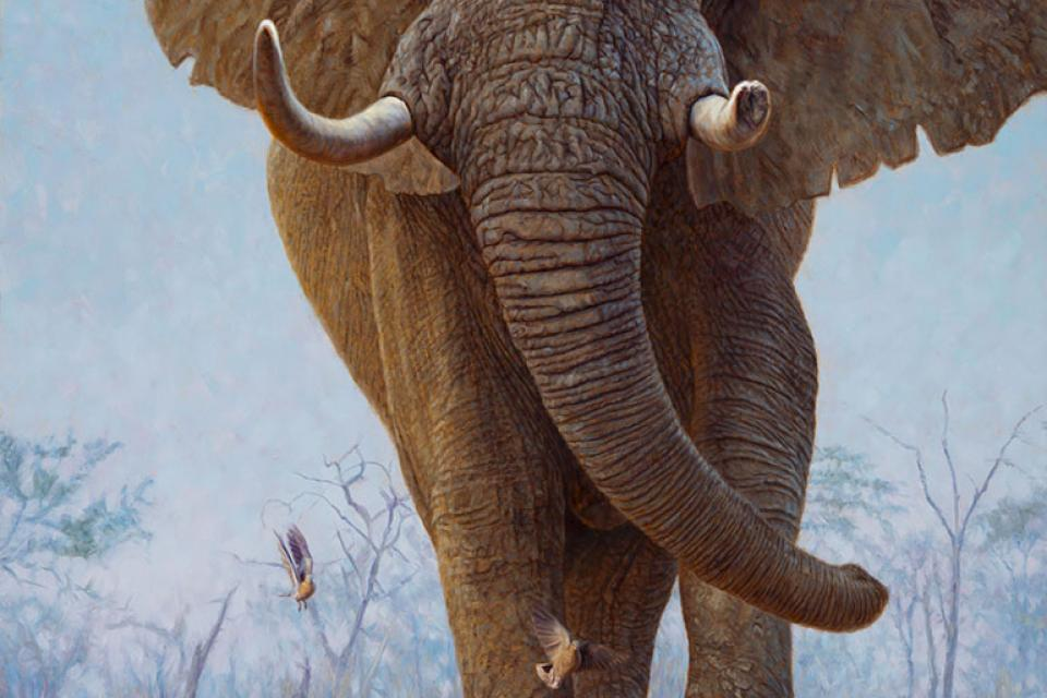 | Wallhanging by John Banovich | Artists for Conservation