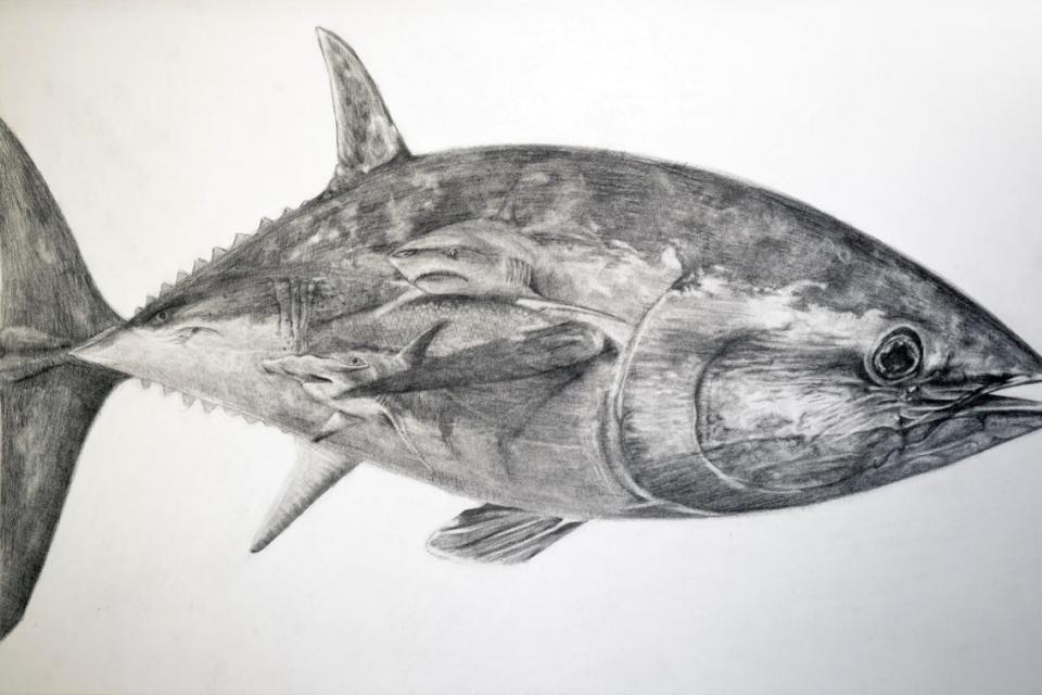Edit Artwork   Wallhanging by Jennifer Pelham   Artists for Conservation