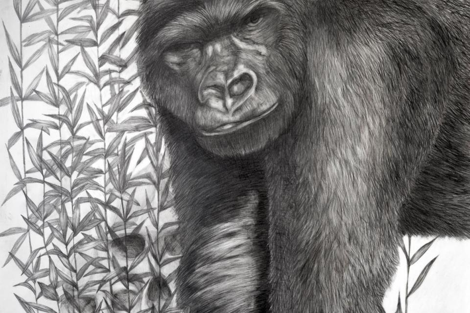 Add Artwork   Wallhanging by Jennifer Pelham   Artists for Conservation